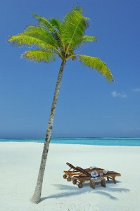 SUNBEDS-ON-BEACH-WITH-PALM-TREES