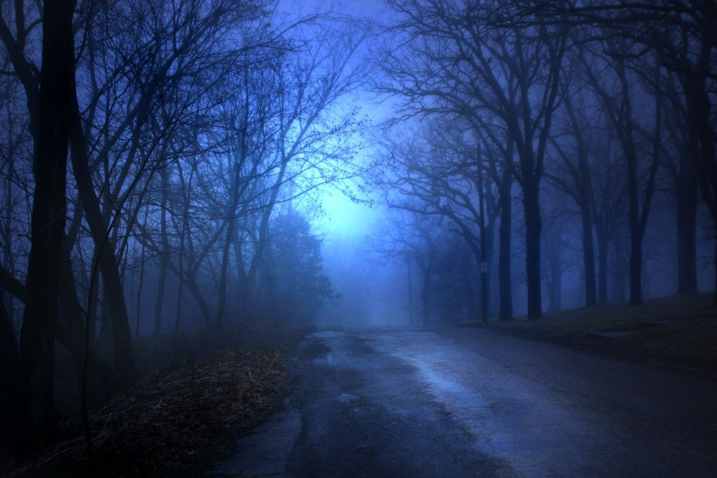 Foggy Road24875782