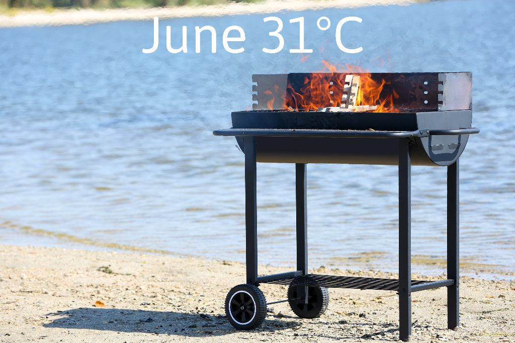 Barbecue on beach 221680669