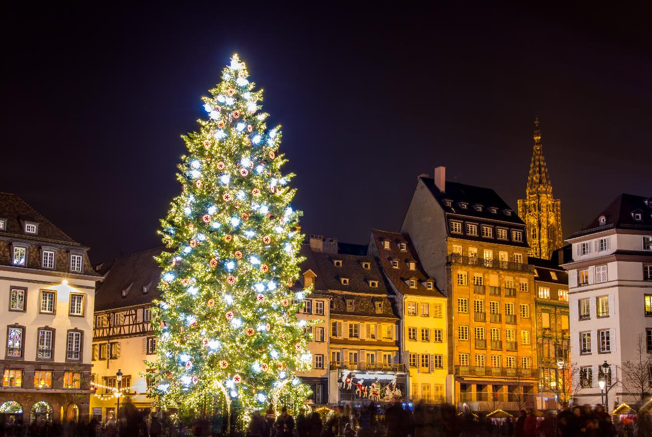 Christmas tree in Strasbourg_236253940