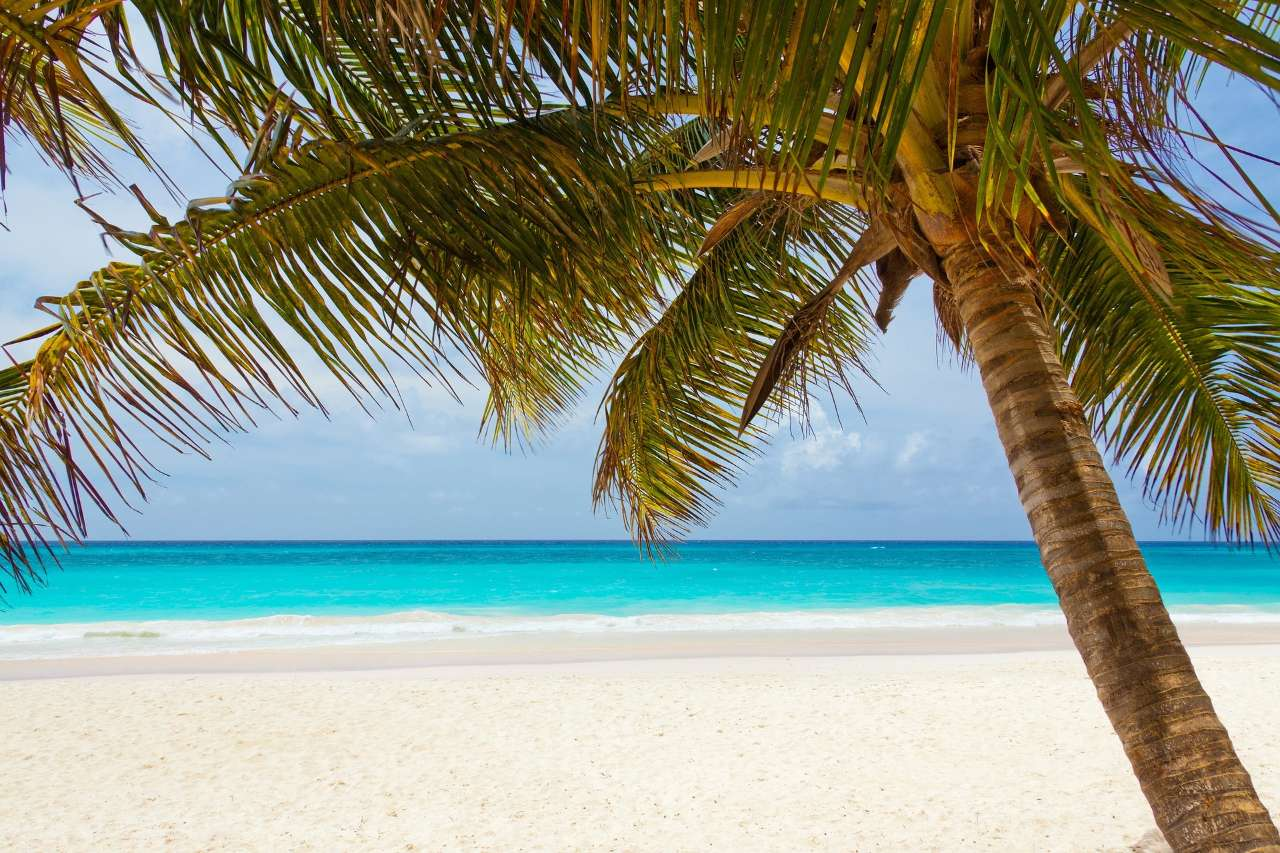 Quiz – What Beach Party Destination Are You?
