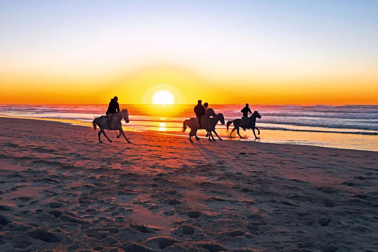 Horse riding sunset