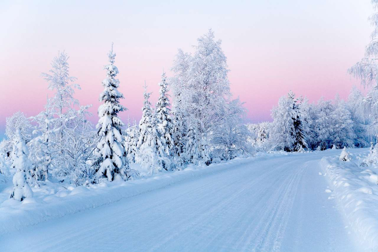 Fantastic Lapland Deals from £465pp