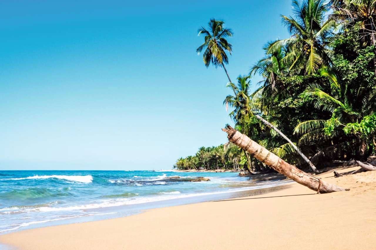 Which Costa Rican Beach Activity Are You?