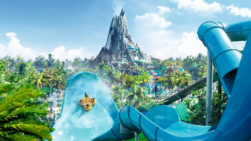 Florida's Best Waterparks