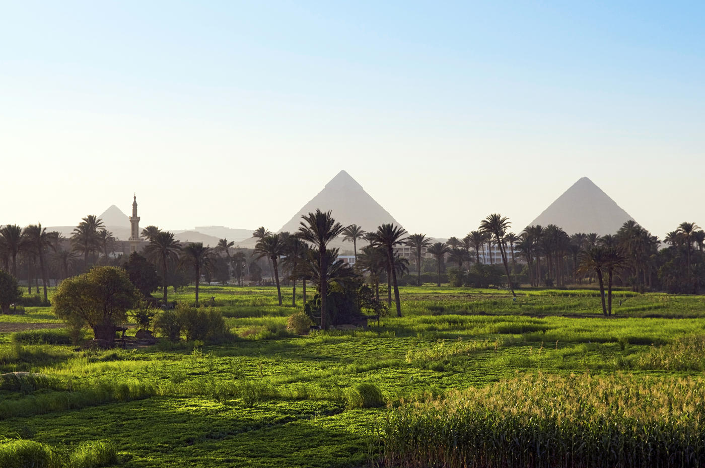 Guide to Currency and Prices in Egypt
