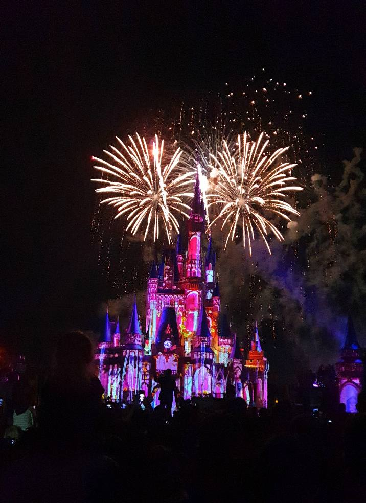 Happily Ever After Magic Kingdom Firework Display