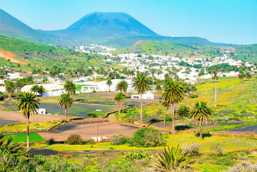 Amazing landscape of Haria valley, the valley of a thousand palms, Lanzarote, Canary Islands